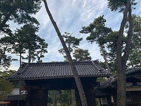 小金井公園_d0248537_09290548.jpg