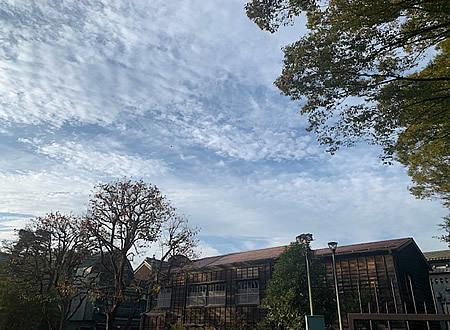 小金井公園_d0248537_09291257.jpg