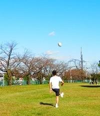 小春日和(ラグビーワールドカップ)_b0221643_23160251.jpg