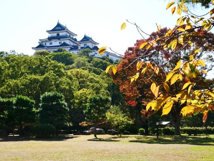 和歌山城二の丸庭園にて  2019-11-12 00:00  _b0093754_21011335.jpg