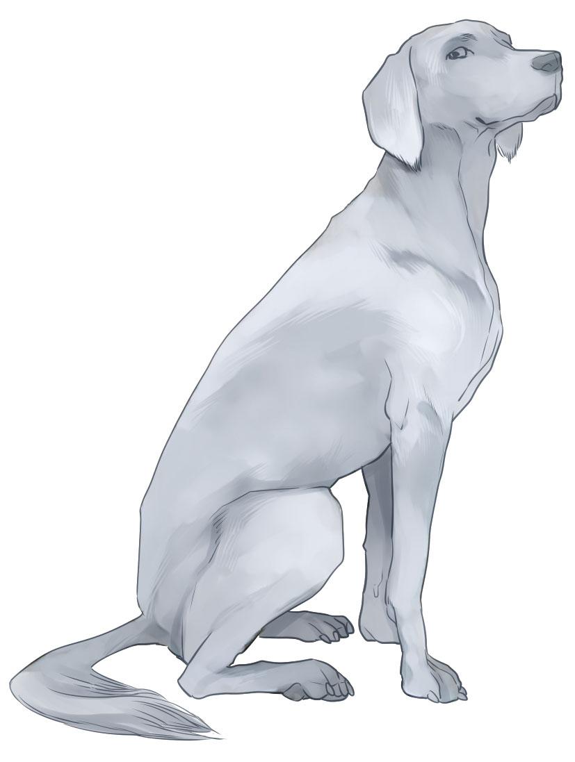 恋犬11話扉の作業工程_a0342172_20434222.jpg