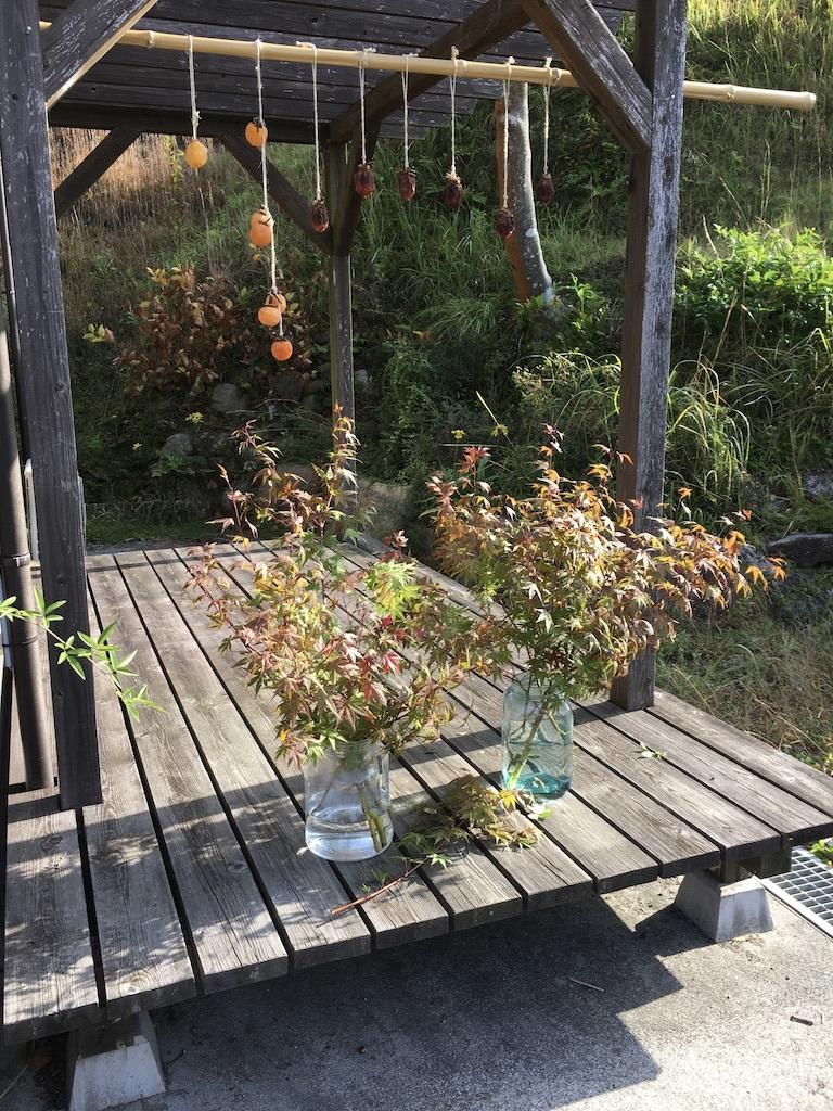 暖かな日差しが嬉しい秋の日に _c0334574_15212956.jpg