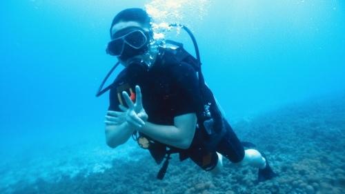北海道から体験ダイビング(^^)_f0144385_16313736.jpeg