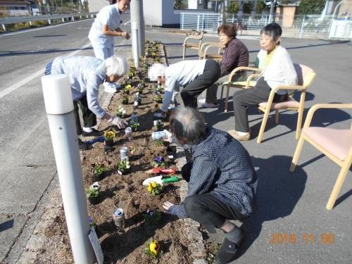 花壇の植え替え_a0318189_13174291.jpg