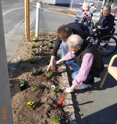 花壇の植え替え_a0318189_13231625.jpg