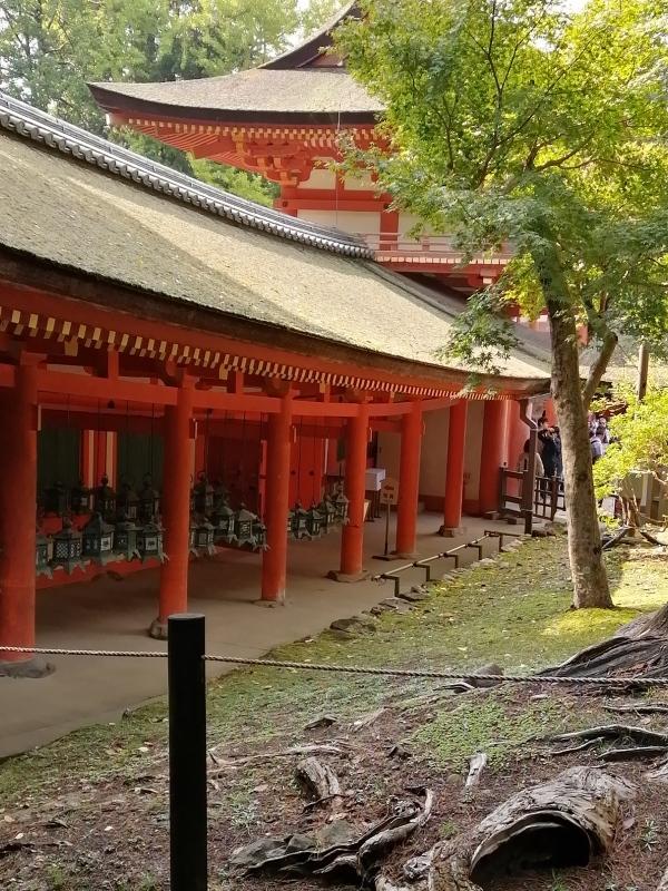 奈良旅 ②_f0374092_19415193.jpg