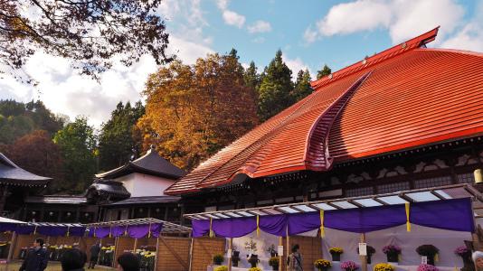 4日には「山門天井画・板壁画修復」講演会が開催されました_c0336902_19033763.jpg