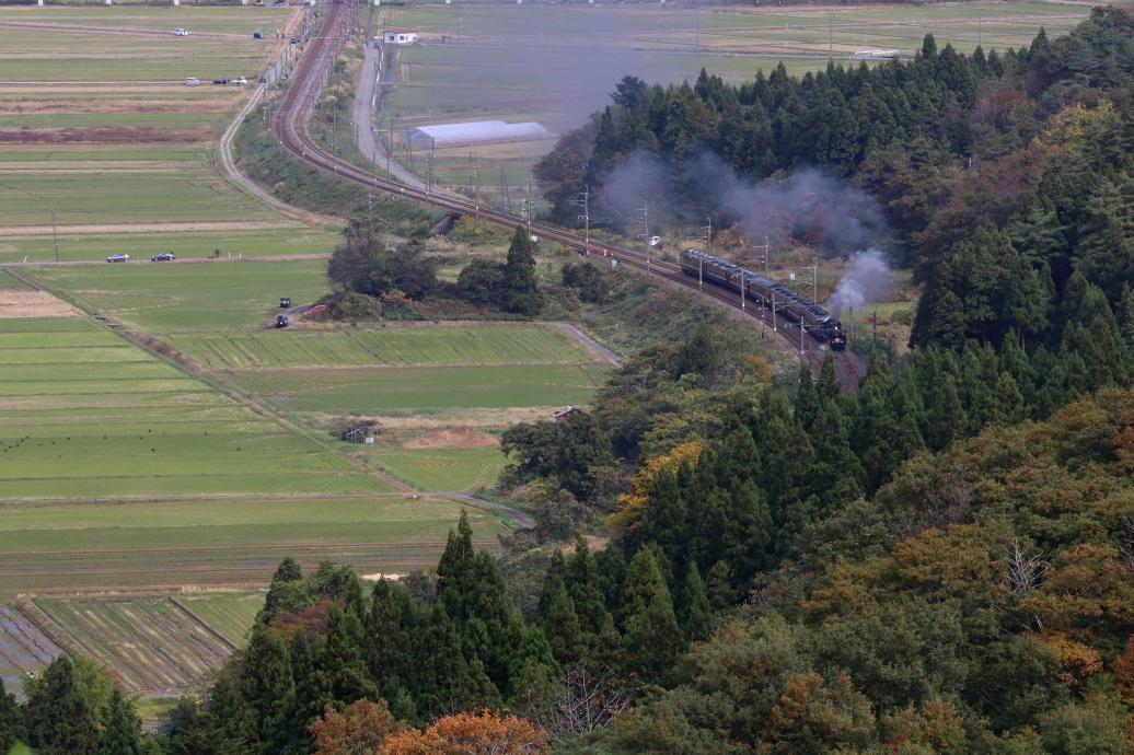 秋の山に向かって築堤を走る汽車 - 2019年晩秋・羽越本線 -_b0190710_19482726.jpg