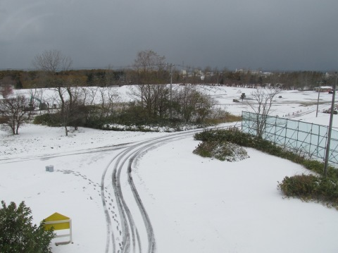 初雪降りました!_d0072917_20143630.jpg