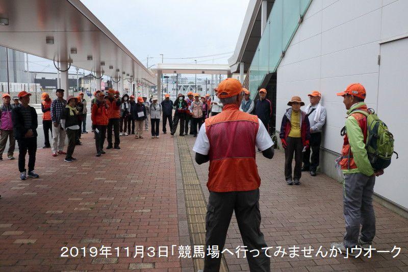 11月例会『競馬場へ行ってみませんか』ウオーク_d0389843_08500503.jpg