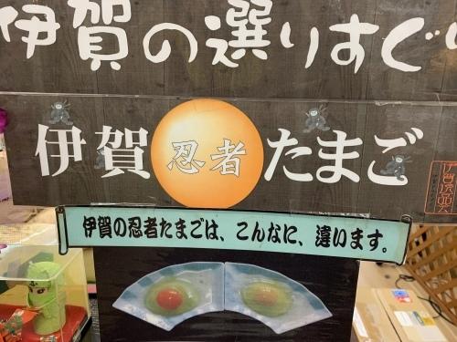 みやげ売り場イチ押し、忍者たまご_f0078545_18282292.jpeg