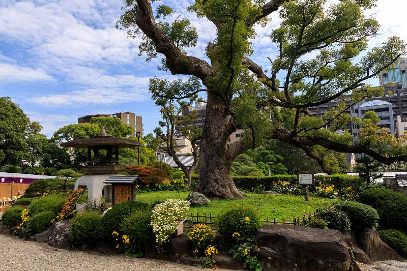 旧ハッサム住宅(神戸・元町)_f0155048_2214467.jpg
