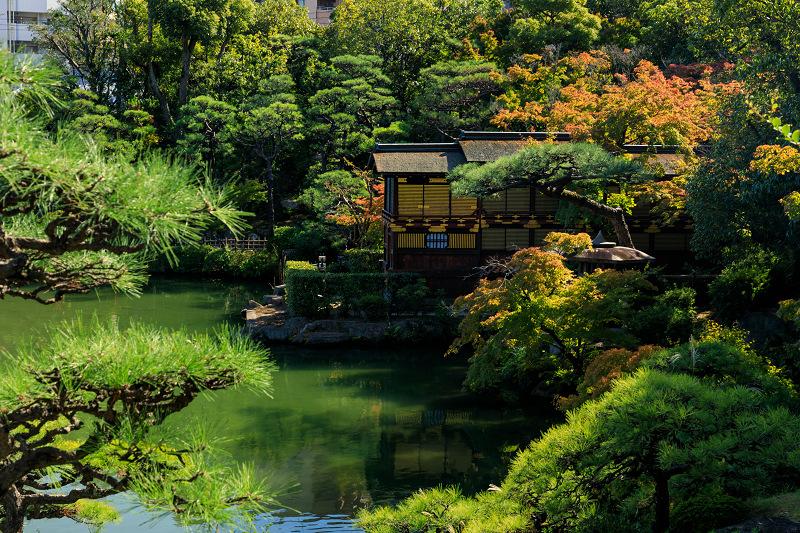 秋めく相楽園(神戸・元町)_f0155048_22222463.jpg