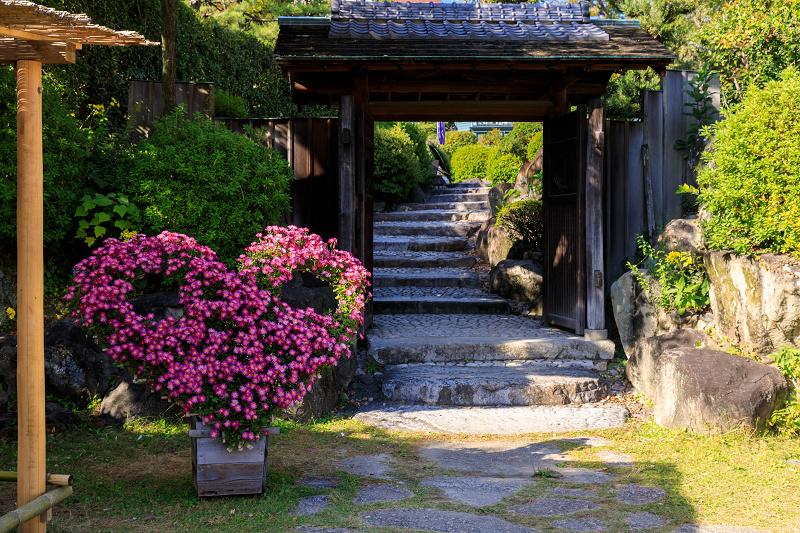 秋めく相楽園(神戸・元町)_f0155048_22241665.jpg