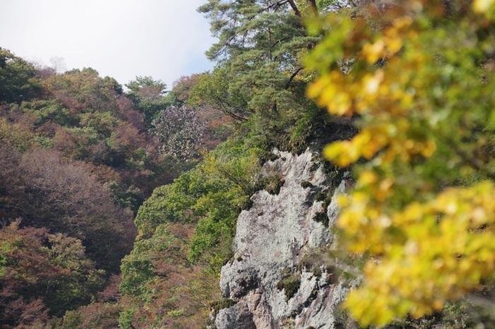 吾妻渓谷と八ッ場ダム_b0144049_10272511.jpg