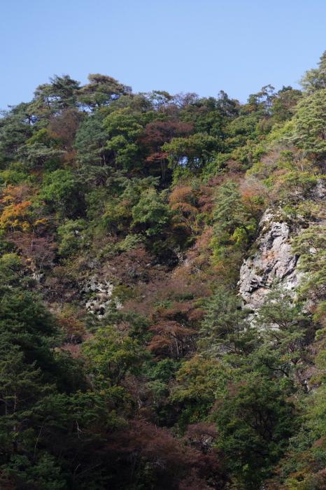 吾妻渓谷と八ッ場ダム_b0144049_10284583.jpg
