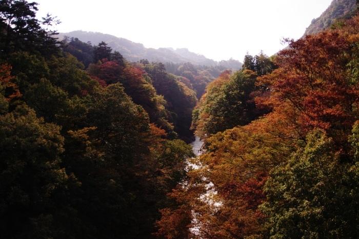 吾妻渓谷と八ッ場ダム_b0144049_11482943.jpg