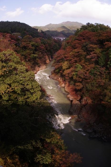 吾妻渓谷と八ッ場ダム_b0144049_11491707.jpg