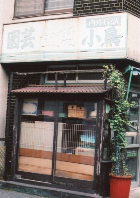 東長崎~江古田 3_c0082066_23581142.jpg
