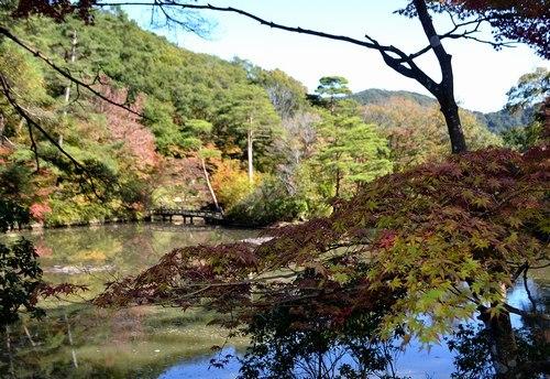 山は紅、空は碧 ~ 絶景の六甲山を駆け抜けた一日 ~_b0102572_00134587.jpg