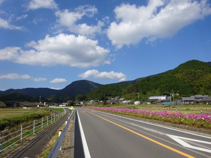 自転車遍路(高知~愛媛)4日目_e0201281_19005140.jpg