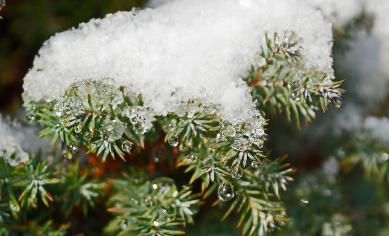 市内にも初雪_d0162994_09031492.jpg