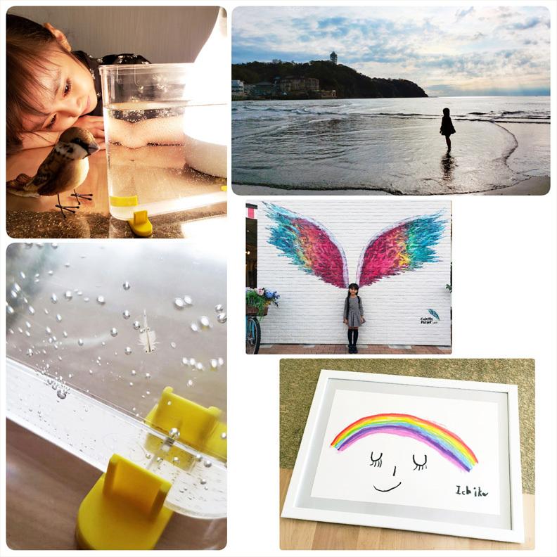 アルちゃん、江ノ島、虹のママ。_d0224894_06250401.jpg