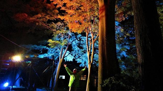 陀羅尼八幡神社もみじまつりライトアップ_b0163804_19210722.jpg