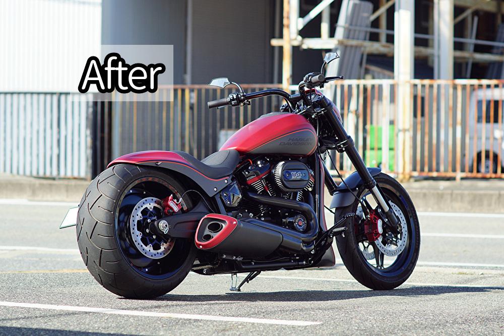 FXDR custom_e0127304_09144192.jpg