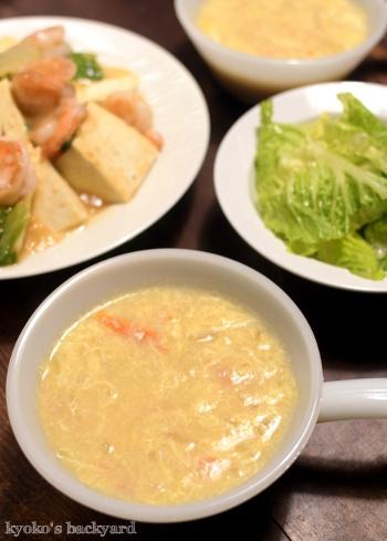 木綿豆腐とエビのガーリック塩あんかけ_b0253205_14145192.jpg