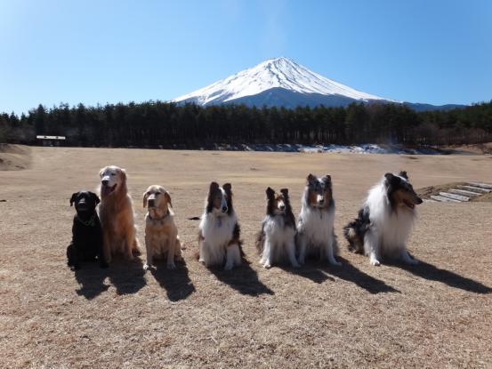 富士五湖方面へ_f0064906_11475449.jpg
