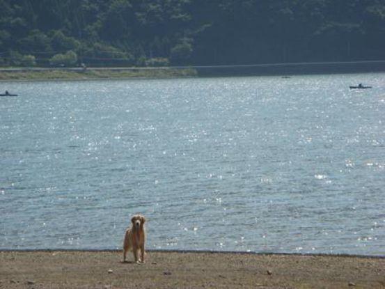 富士五湖方面へ_f0064906_11481877.jpg