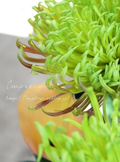 秋の花と春の花_a0085317_15283289.jpg