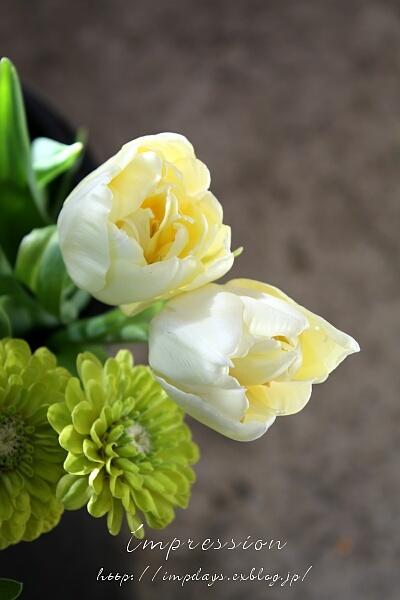 秋の花と春の花_a0085317_15283880.jpg