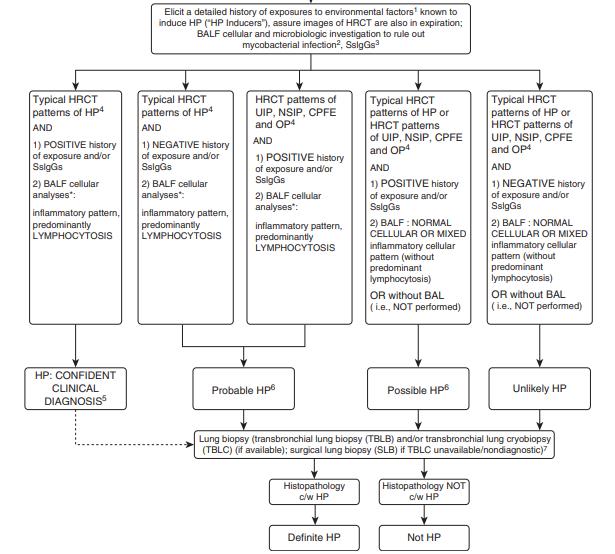 慢性夏型過敏性肺炎の診断基準提唱_e0156318_22321393.png