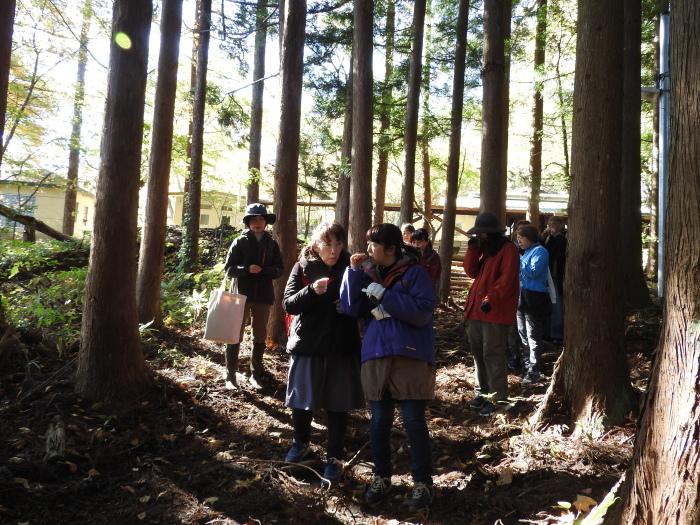 11/4 森林セラピ-体験_b0189727_11180307.jpg
