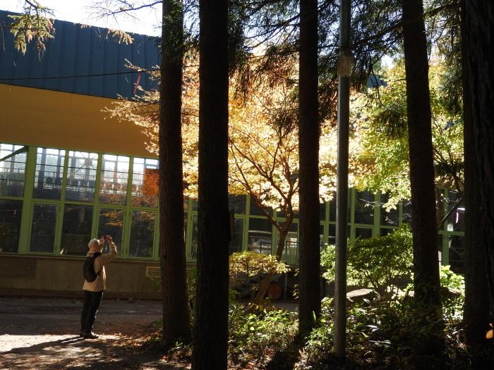 11/4 森林セラピ-体験_b0189727_11362905.jpg