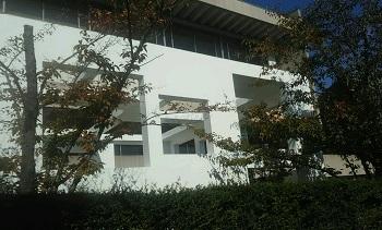 ◆ コーヒーブレイク 家の窓 (竹橋 東京)_e0098739_11135342.jpg