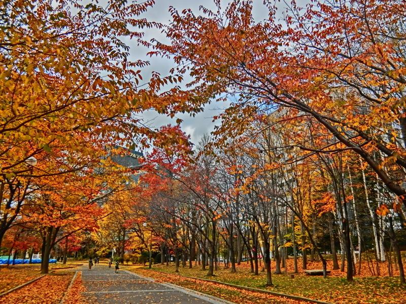 札幌 (9) 中島公園 - 4_b0408745_09324916.jpeg