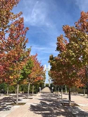 紅葉の季節_a0212046_16052685.jpg