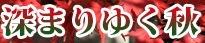 <2019年10月20~21日>ゼロ磁場「分杭峠」&200名山「経ケ岳」単独登山_c0119160_07090288.jpg