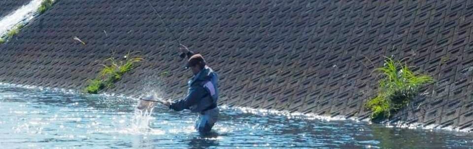 駿河 釣り日和_f0266202_17300583.jpg