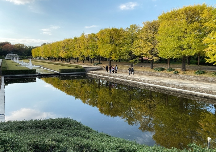 昭和記念公園ウォーキング_d0202319_13593937.jpeg