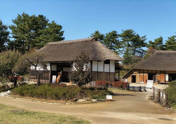 昭和記念公園ウォーキング_d0202319_14071494.jpeg