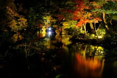 清水園 ~庭園ライトアップ最終日~_e0135219_15464821.jpg