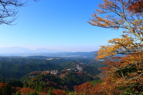 秋になってきました!_e0154524_21040910.jpg