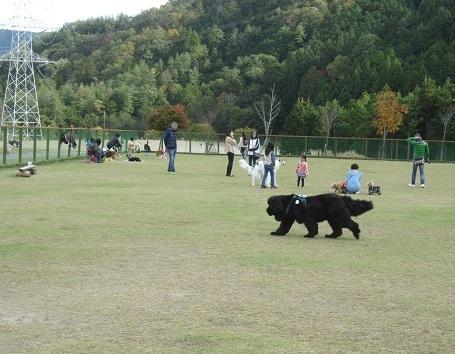 京都のお山_b0177436_20413792.jpg