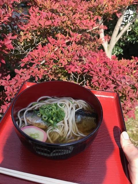 東福寺の紅葉だいぶ染まってます_d0020139_21533719.jpeg