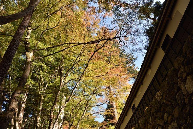 両界山横蔵寺_e0170058_15550949.jpg