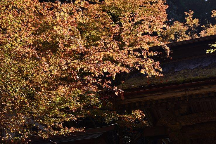 両界山横蔵寺_e0170058_15555039.jpg